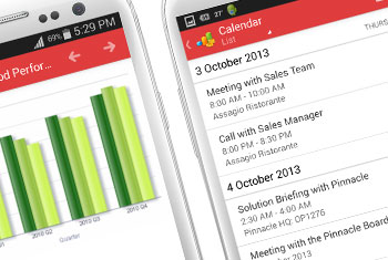 Detailed Plans: Implement detailed account management and sell effectively with partners