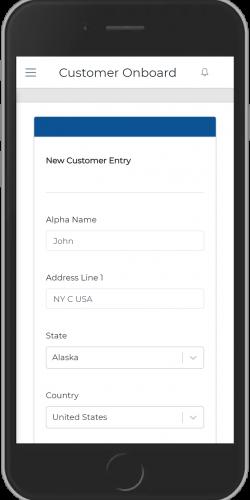 New Customer Entry